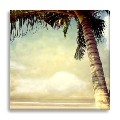 Vintage Palm Tree I Large Canvas Wall Art