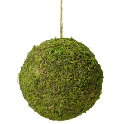 Lillian Rose™ Moss Hanging Ball