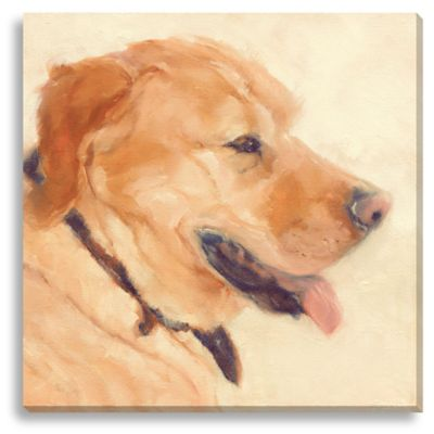 Gus by Suzanne Stewart Medium Canvas Wall Art