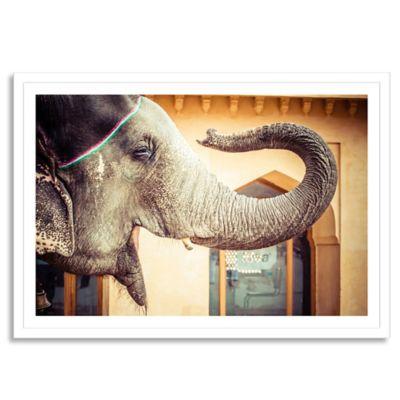 Elephant, India, Jaipur, State of Rajasthan Large Photographic Wall Art