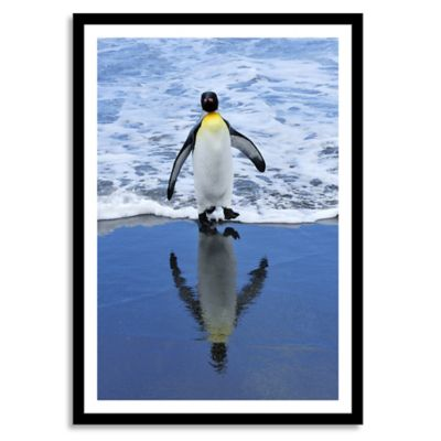King Penguin on Beach Large Photographic Wall Art