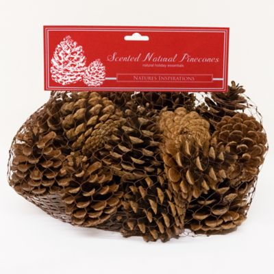 Scented Natural Pine Cone Bag
