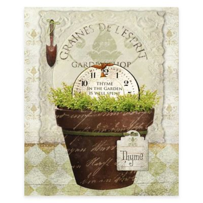 Herbpot Thyme Gallery Canvas Wall Art