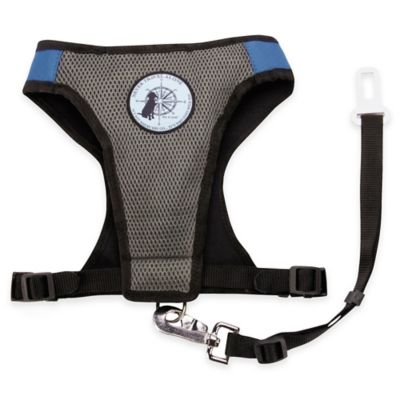 Dog is Good® Small Never Travel Alone Harness in Blue