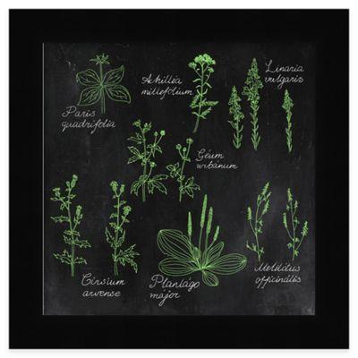 Chalkboard Herbs 3 Framed Wall Art