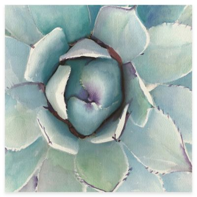 Agave Framed Canvas Wall Art