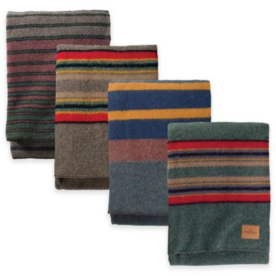 Pendleton® Hemrich Stripe Camp Full/Queen Blanket in Lake