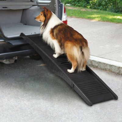 Tri-Fold Vehicle Pet Ramp in Black