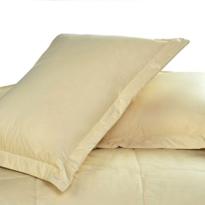 Cotton Dream Colors Tailored Standard Pillow Sham in Sage