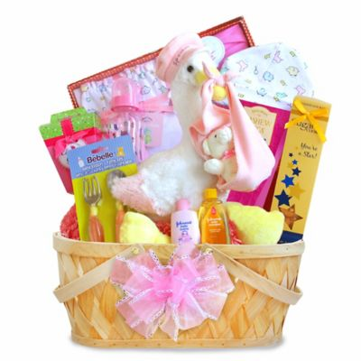 Special Delivery Baby Girl Stork Basket