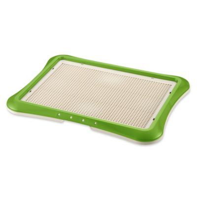 Paw Trex® Mesh Training Tray in Green