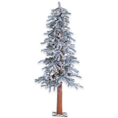 5-Foot Flocked Alpine Tree Pre-Lit with 100 Clear Lights