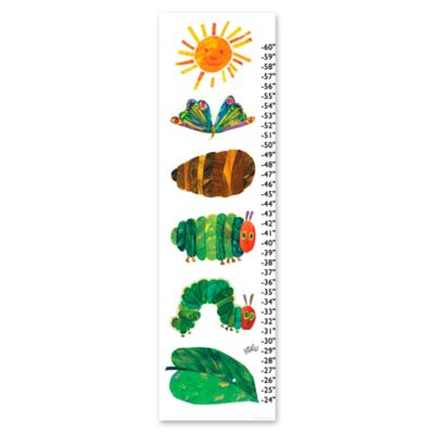 Eric Carle Life Cycle Growth Chart Canvas Wall Art