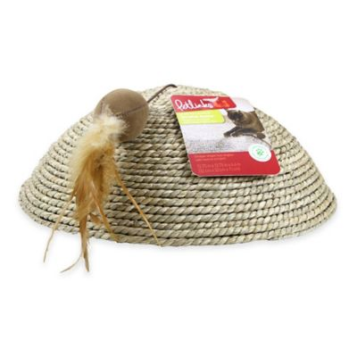 Scratch Dome™ Cat Scratcher in Brown