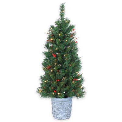 4-Foot Pre-Lit Potted Hazelwood Pine Christmas Tree with Clear Lights
