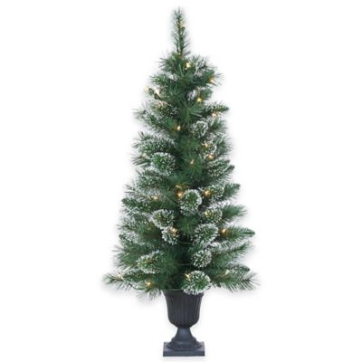 3.5-Foot Pre-Lit Potted Kentucky Pine Christmas Tree with Clear Lights