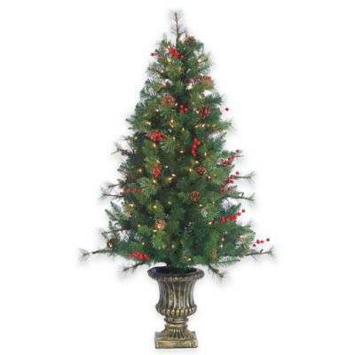 4.5-Foot Pre-Lit Potted Alberta Spruce Christmas Tree with Clear Lights