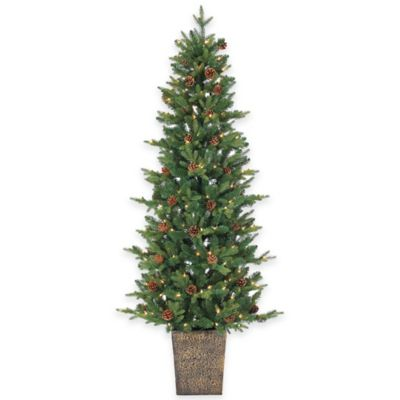Georgia Pine 6-Foot Pre-Lit Potted Christmas Tree with Pinecones and Clear Lights