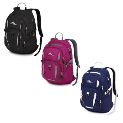 High Sierra® Ryler 20-Inch Laptop Backpack