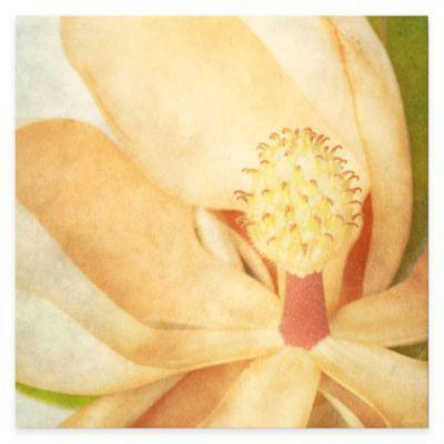 Vintage Magnolia II Canvas Wall Art