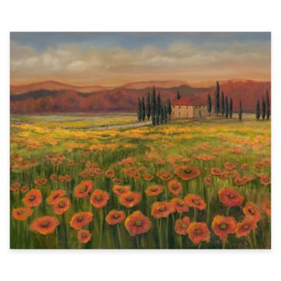 Tuscan Meadow I Canvas Wall Art