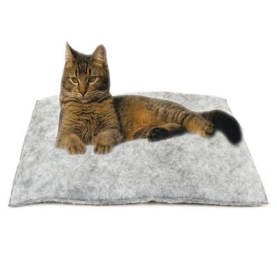 Mysterious Purr Padd® Cat Cushion in Charcoal (Set of 2)