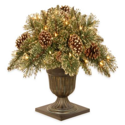 National Tree Company 24-Inch Gold Pine Porch Bush with Clear Lights