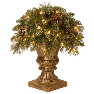 National Tree Company18-Inch Glittery Gold Pine Porch Bush with Clear Lights