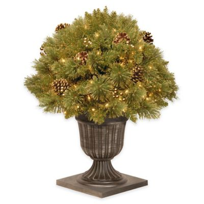 National Tree 26-Inch Pre-Lit Glittery Gold Pine Porch Bush with Clear Lights