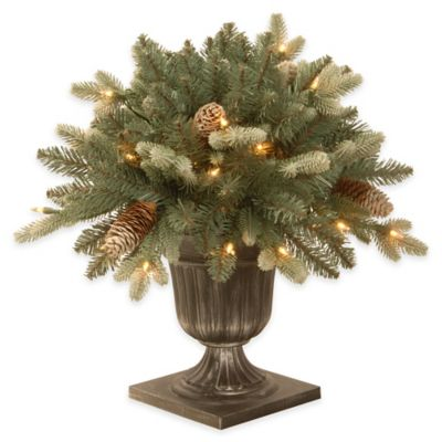 National Tree 2-1/2-Foot Copenhagen Blue Spruce Porch Bush with Clear Lights