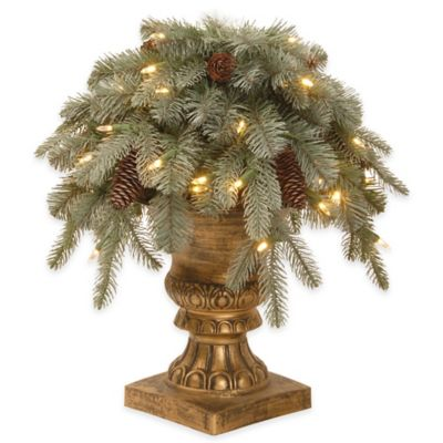 National Tree Company 18-Inch Frosted Artic Spruce Pre-Lit Porch Bush with Clear Lights