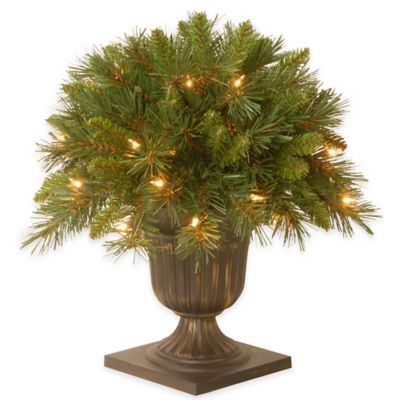 National Tree Company 18-Inch Pre-Lit Tiffany Fir Porch Bush with Clear Lights
