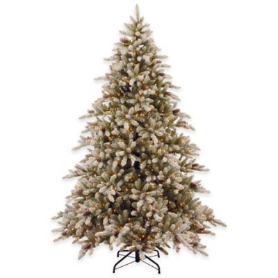 National Tree 9-Foot Pre-Lit Snowy Concolor Fir Hinged Christmas Tree with Clear Lights