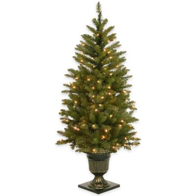 National Tree 4.5-Foot Pre-Lit Dunhill Fir Entrance Tree with White LED Lights