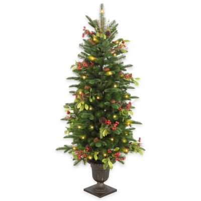 National Tree 4-Foot Decorative Berry Leaf Entrance Tree with Clear Lights