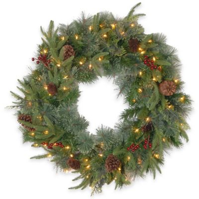 National Tree 24-Inch Colonial Pre-Lit Wreath with Battery-Operated Dual Color LED Lights