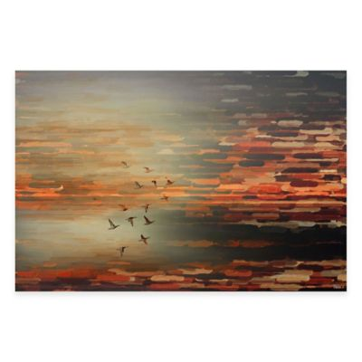 Parvez Taj Night Flight 24-Inch x 16-Inch Canvas Wall Art