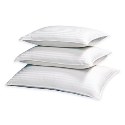 Palais Royale™ Pinnacle Standard Down Back Sleeper Pillow