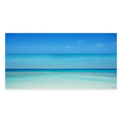 Clear Blue 24-Inch x 12-Inch Canvas Wall Art