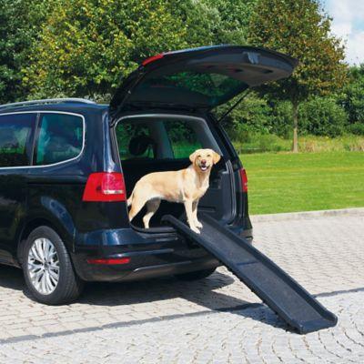 61.25-Inch Multipurpose Bifold Pet Ramp