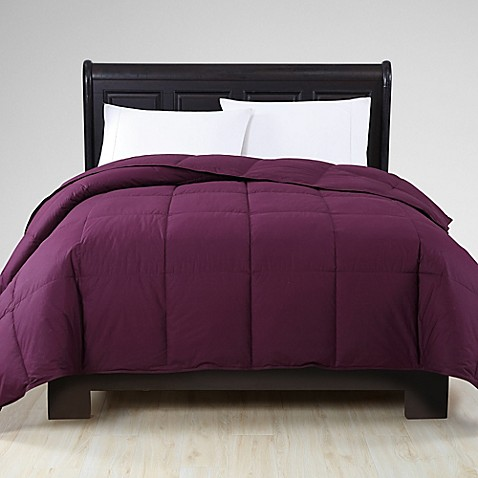 Buy Vcny Reversible Down Twin Xl Comforter In Plum From