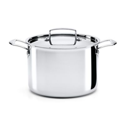 The French Chefs™ 5-Ply Stainless Steel 8 qt. Covered Stock Pot