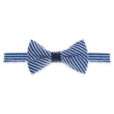 Blue Suspender and Bowtie Set