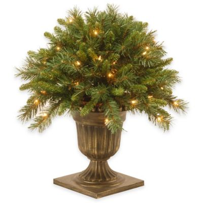 National Tree Company 24-Inch Pre-Lit Tiffany Fir Porch Bush