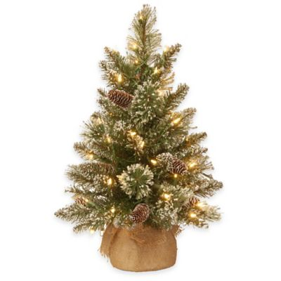National Tree 2-Foot Glittery Bristle Pine Pre-Lit Tree with White LED Lights