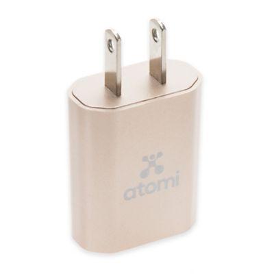 Wall Plug USB Charger
