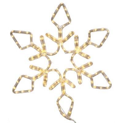 Vickerman 48-Inch LED Diamond Snowflake in Pure White
