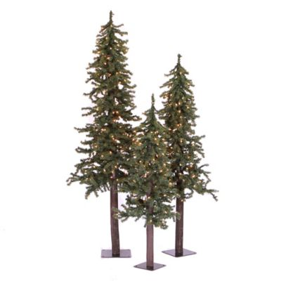 Vickerman 3-Piece 2, 3 & 4-Foot Natural Alpine Pre-Lit Christmas Tree Set with Multi Lights