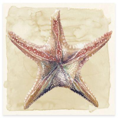 Watercolor Starfish Canvas Wall Art
