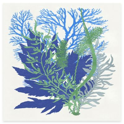 Blue Coral Arrangement 1 Canvas Wall Art